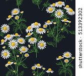 Seamless Pattern With Wild...