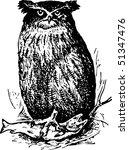 bird ketupa blakistoni | Shutterstock .eps vector #51347476
