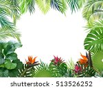 vector tropical jungle... | Shutterstock .eps vector #513526252