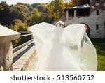 the charming bride walking... | Shutterstock . vector #513560752