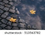 bright yellow leaves in puddle... | Shutterstock . vector #513563782