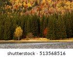 Lake Reflections Of Fall...