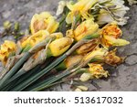 Dying Yellow Flowers Laid As A...