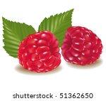 photo realistic vector... | Shutterstock .eps vector #51362650