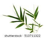 leaf of bamboo isolated on... | Shutterstock . vector #513711322