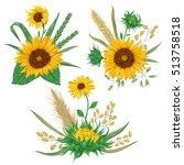 sunflower  barley  wheat  rye ... | Shutterstock .eps vector #513758518