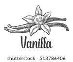 vanilla stick and flower.... | Shutterstock .eps vector #513786406