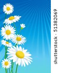 daisies | Shutterstock .eps vector #51382069