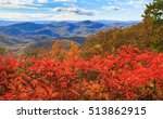 A scenic view from Log Hollow Overlook on the Blue Ridge Parkway in fall when the sassafras shrubs turn vibrant red for the autumn season.