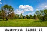 nice summer scene with green... | Shutterstock . vector #513888415