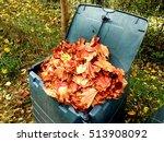 Compost Bin Full Of Autumn...