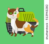 Cartoon Cat And Cat Carrier On...