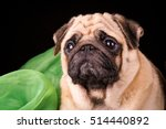 pug portrait on black... | Shutterstock . vector #514440892