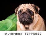 pug portrait on black... | Shutterstock . vector #514440892
