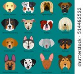 dog faces set with breeds name | Shutterstock .eps vector #514482532