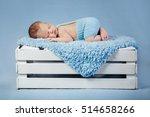newborn   Shutterstock . vector #514658266
