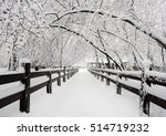 winter landscape with the fence ...