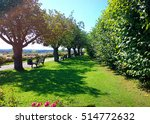 beautiful panoramic garden with ... | Shutterstock . vector #514772632