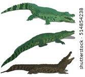 set of crocodiles | Shutterstock .eps vector #514854238