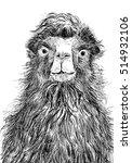camel illustration hand drawn... | Shutterstock . vector #514932106