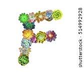 succulent letter f