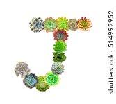 succulent letter j