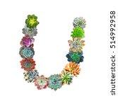 succulent letter u