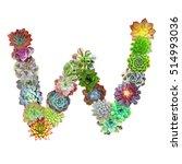succulent letter w