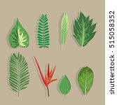 tropical leaves collection on... | Shutterstock .eps vector #515058352