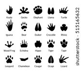 animal and reptile footprints... | Shutterstock .eps vector #515165632