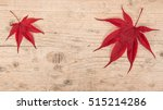 Two Red Maple Leaves At The...