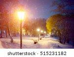 Winter Snowfall Scene. Severe...