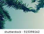 background of palm leaves and... | Shutterstock . vector #515398162