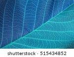 blue leaf background | Shutterstock . vector #515434852