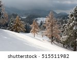 Winterland In The Eastern Alps