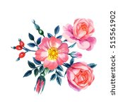 watercolor hand painted roses.... | Shutterstock . vector #515561902