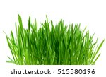 Green Grass Isolated On The...