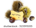 hedgehogs with chestnuts on... | Shutterstock . vector #515595355