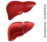 realistic human liver. vector... | Shutterstock .eps vector #515634526