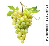 ripe grape isolated on white.... | Shutterstock .eps vector #515655415