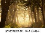 rain forest | Shutterstock . vector #51572368