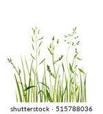 Watercolor Drawing Green Grass...