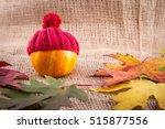Small Decorative Pumpkin In A...