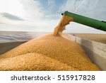 pouring corn grain into tractor ... | Shutterstock . vector #515917828