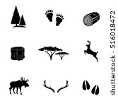forest icon set isolated on...   Shutterstock .eps vector #516018472