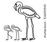 flamingo. vector. illustration.   Shutterstock .eps vector #516055945