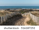 path in the dunes towards the... | Shutterstock . vector #516187252