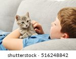 Stock photo child with kitten on grey sofa at home 516248842