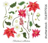 Set Of Elements Of Poinsettia...