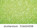 Lime Background Sequins.  Lawn...